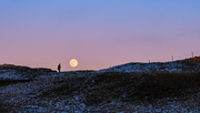 29th Dec 2020 - Moon rising