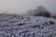 30th Dec 2020 - COLD WINTER MORN