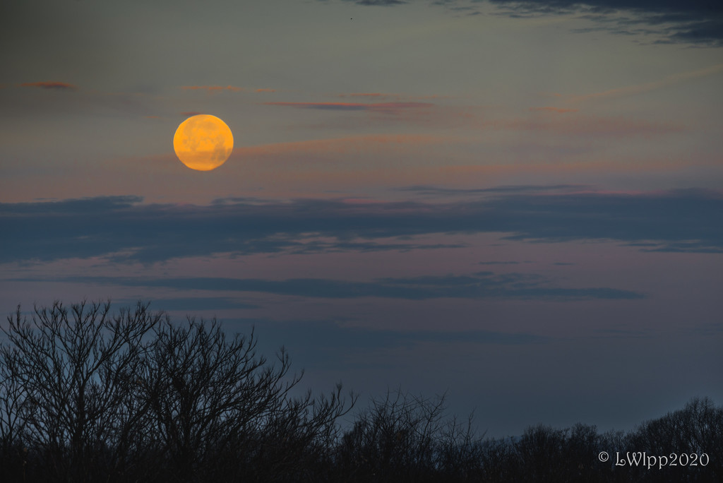 Chasing The Setting Moon  by lesip