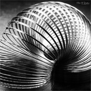 30th Dec 2020 - Macro Slinky
