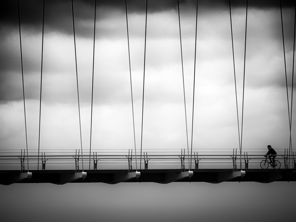 suspended by northy