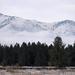 Wintry Montana Vista