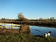 30th Dec 2020 - Debris after the deluge
