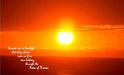 31st Dec 2020 - Golden sunset
