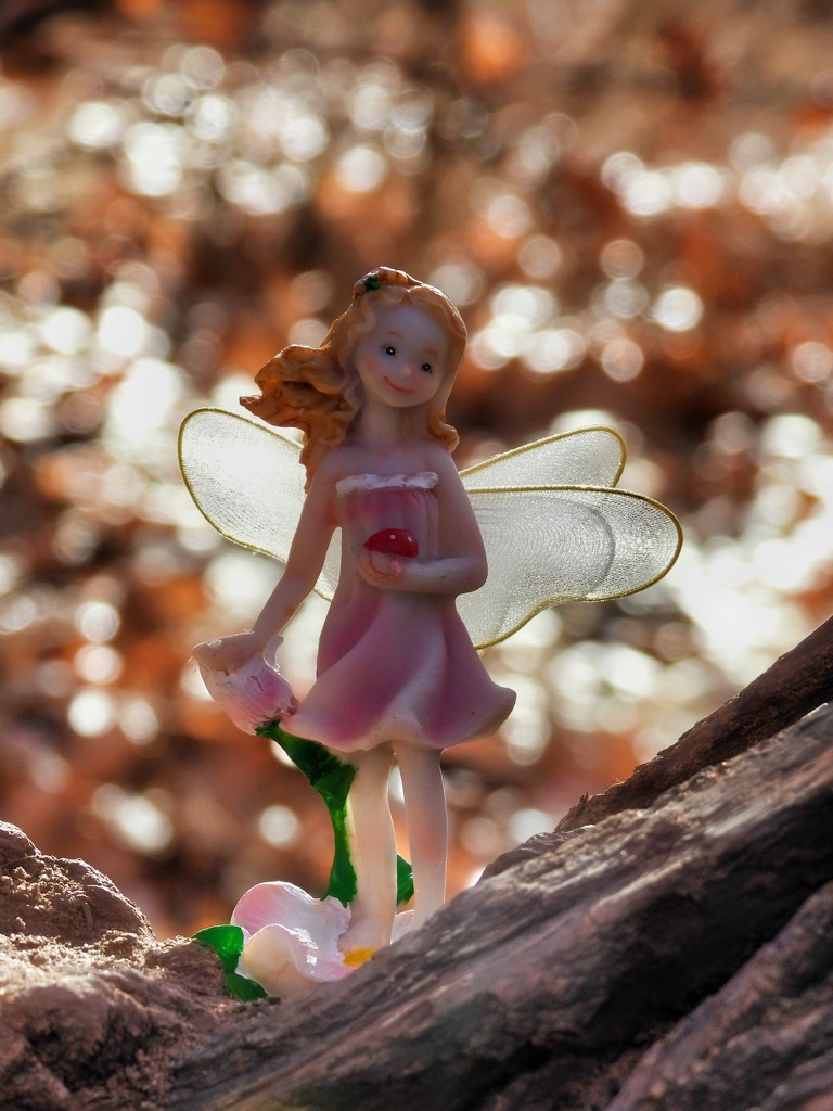Fairy in the Woods by janeandcharlie