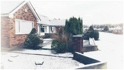 1st Jan 2021 - We had a smattering of snow last night - yay!