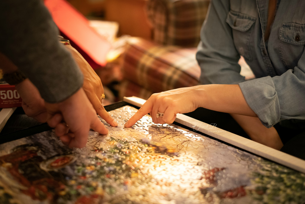 Jigsaw Puzzles by janetb