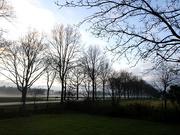 2nd Jan 2021 - emerging fog
