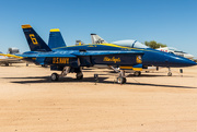 2nd Jan 2021 - US Navy Blue Angels