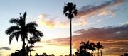 27th Dec 2020 - Sunset over Jindalee Brisbane
