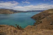 3rd Jan 2021 - Beautiful day on Lyttelton Harbour