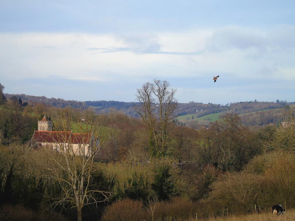 Hughenden Valley by bulldog