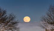 30th Dec 2020 - Cold moon