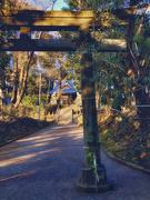 3rd Jan 2021 - 2021-01-03 初詣 / Hatsumode