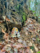 4th Jan 2021 - Hansel and Gretel trap.