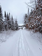 5th Jan 2021 - Snowshoe Trail———Hubby up Ahead