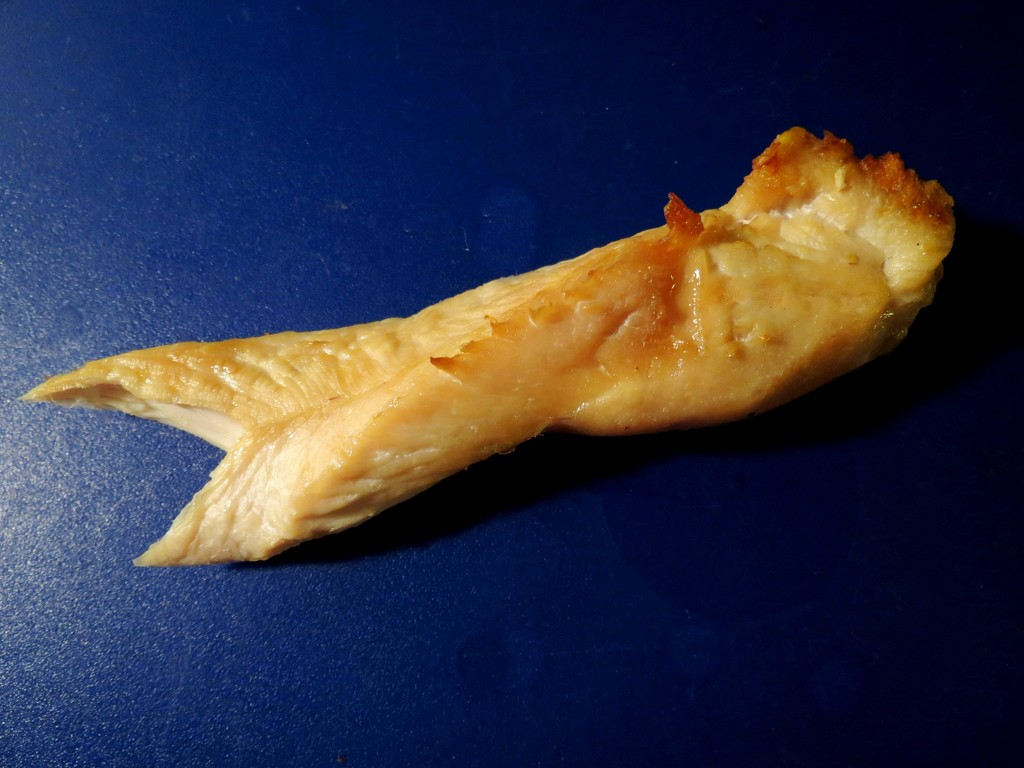 Faux Fish by grammyn