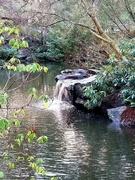 3rd Jan 2021 - Hidden Waterfall