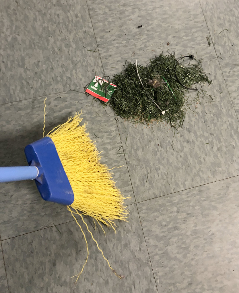 Christmas Cleanup by homeschoolmom