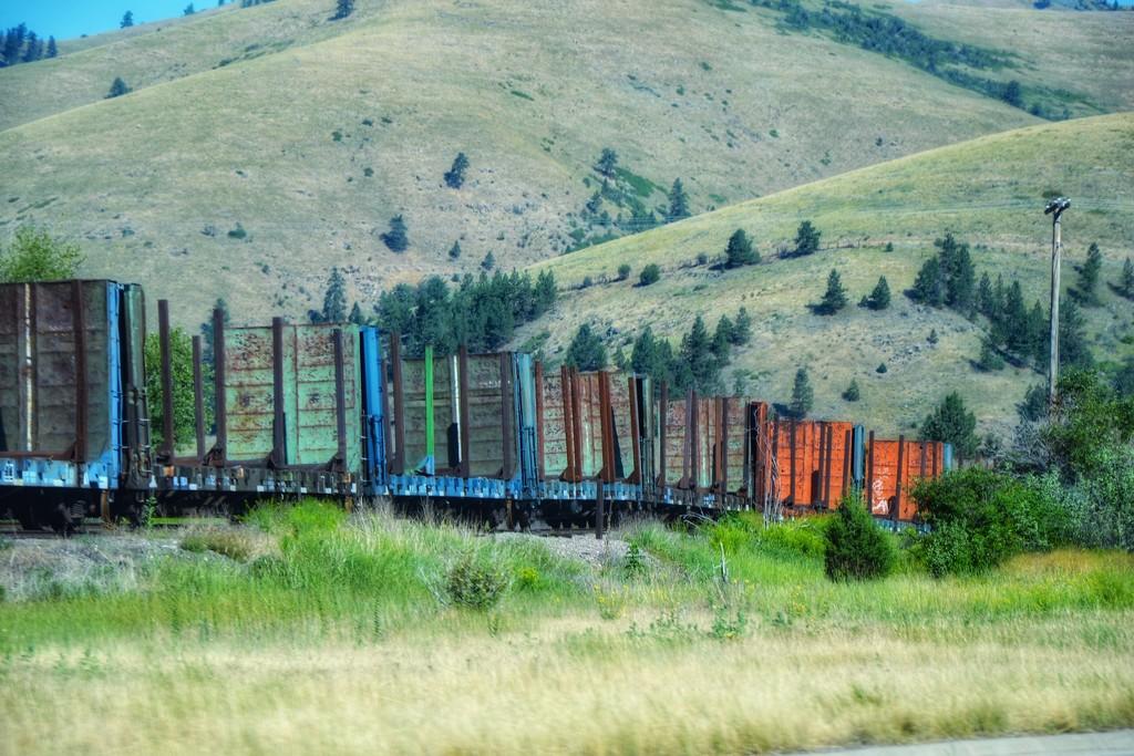 The railroads changed America  by louannwarren