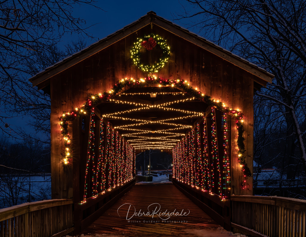 Covered Bridge by dridsdale
