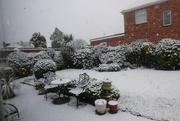 4th Jan 2021 - Garden in the snow