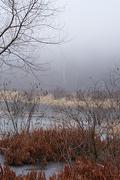 3rd Jan 2021 - Lower Stump Lake, Fog