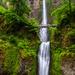 Multnomah Falls by photograndma