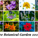 Ringve Botanical Garden