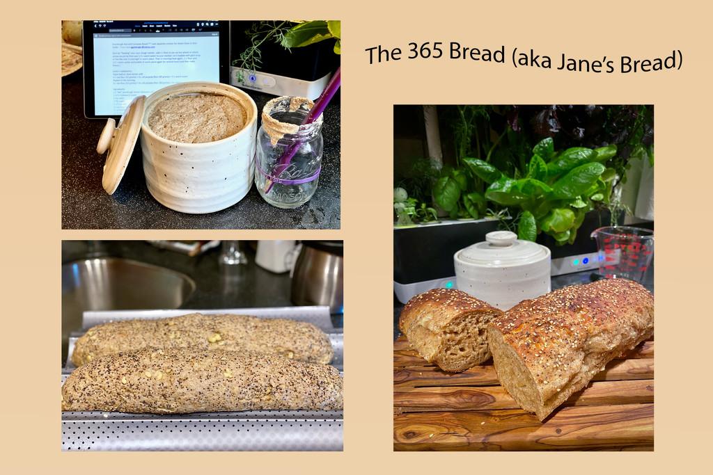 The 365 Bread (Jane Pittenger's Recipe) by jyokota
