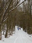 """5th Jan 2021 - A """"New"""" Trail"""