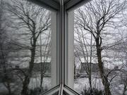 6th Jan 2021 - Den otevřených oken
