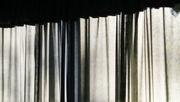 7th Jan 2021 - Curtains...