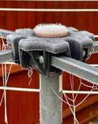 7th Jan 2021 - Wintry washing line