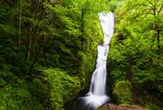 7th Jan 2021 - Landscape of the Falls