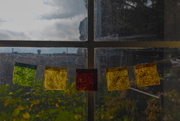 5th Jan 2021 - Prayer Flags Window