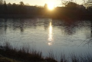 8th Jan 2021 - The sun has withered from the lake and no bird sings.