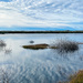 Reflections On South Jetty Trail