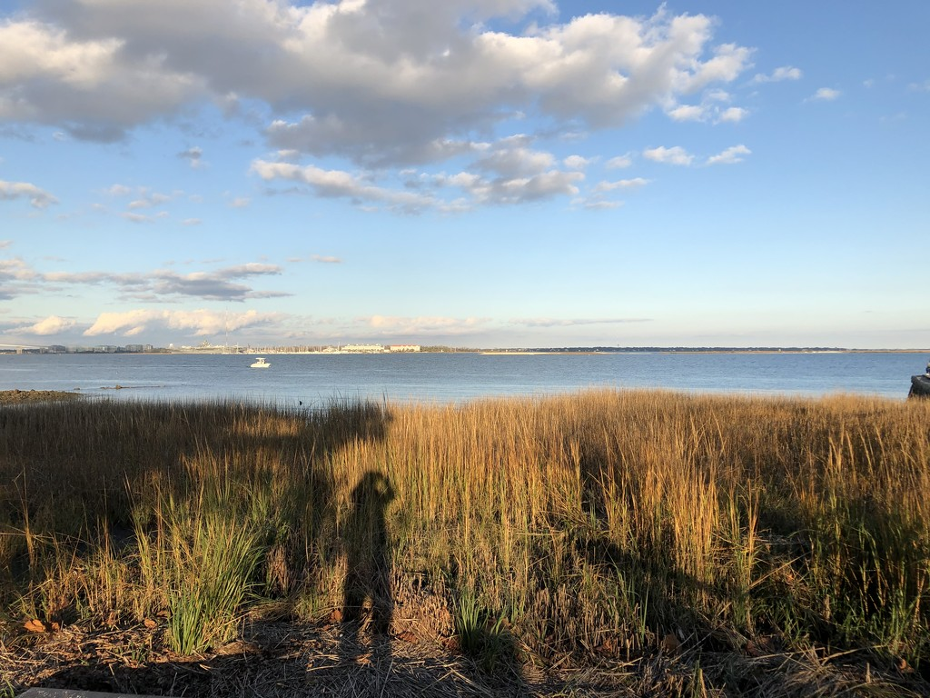 Photographing a view of Charleston Harbor by congaree