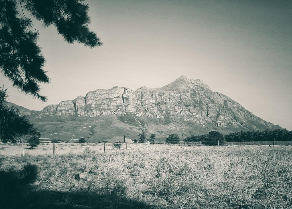 Mountain View  by salza