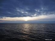 31st Dec 2020 - Short Lived Sun