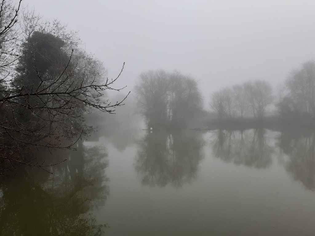 Fog on the river by mave