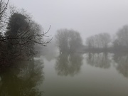 9th Jan 2021 - Fog on the river