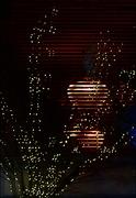 6th Jan 2021 - Reflected Lights