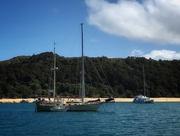 9th Jan 2021 - Torrent Bay, Tasman