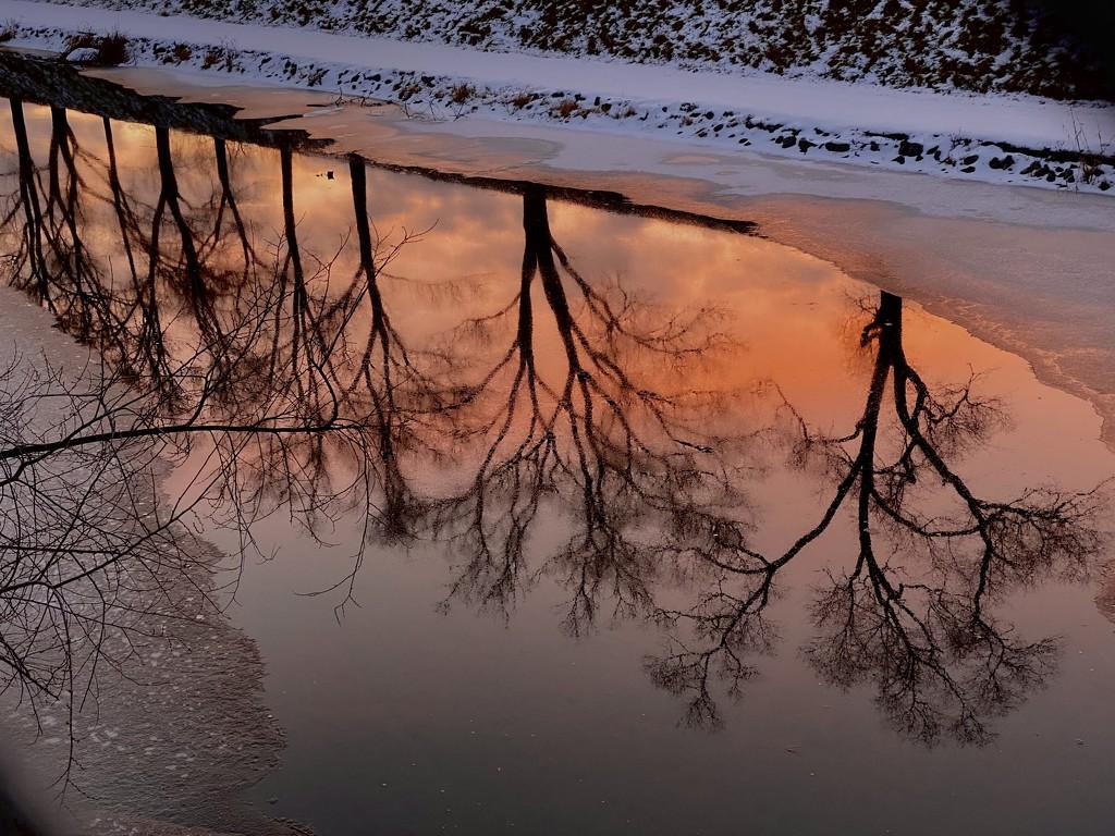 winter glow by vankrey