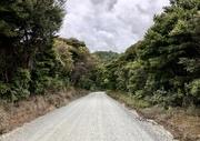 10th Jan 2021 - Road to Kaitarakihi