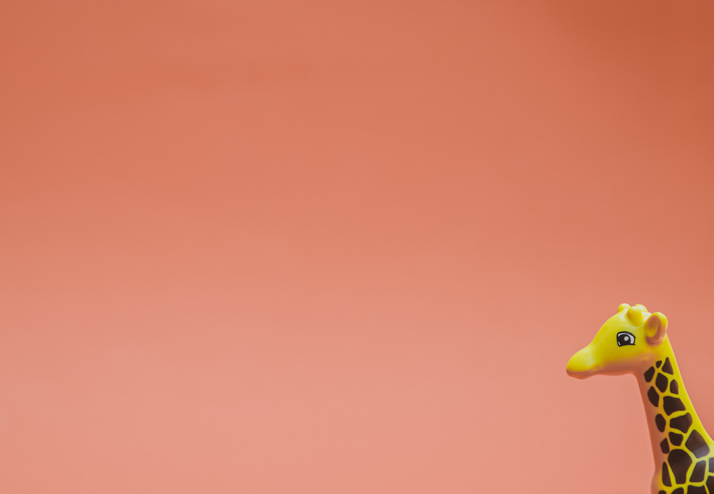 (Day 331) - Giraffe's Space by cjphoto