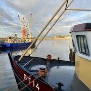 8th Jan 2021 - Warm afternoon light in Stavoren harbour