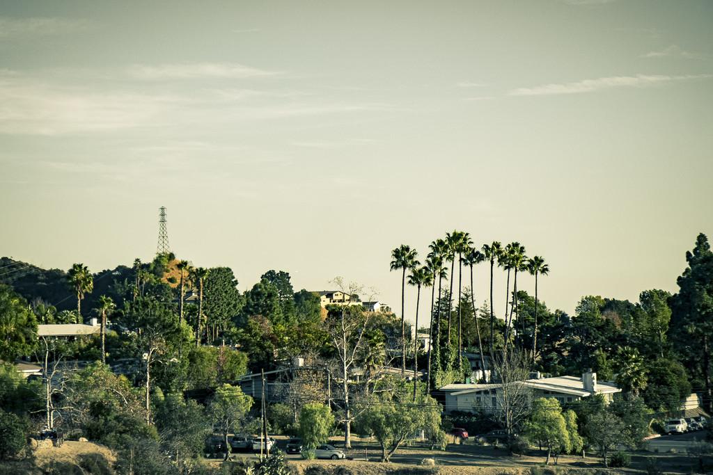 Vintage Los Angeles by mrslaloggie
